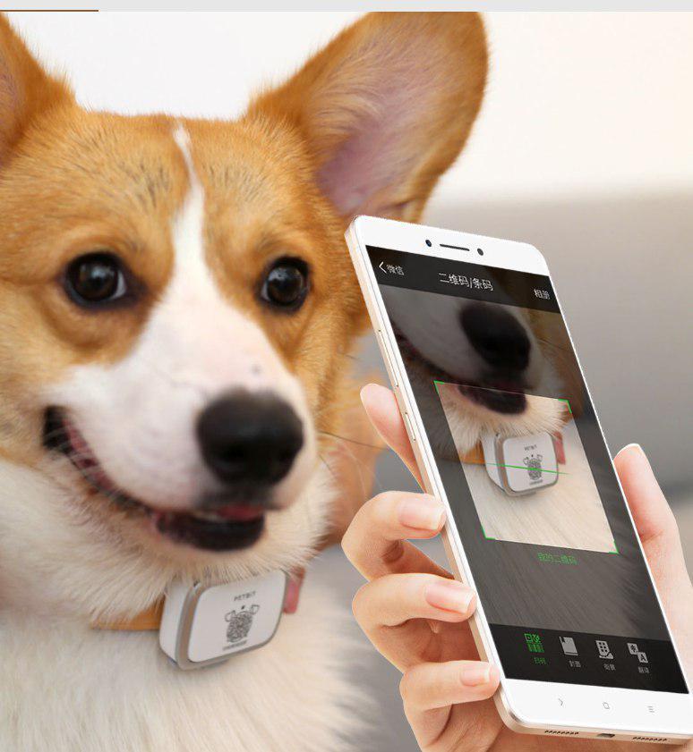 ردیاب هوشمند حیوانات خانگی شیائومی | شیائومی کالا